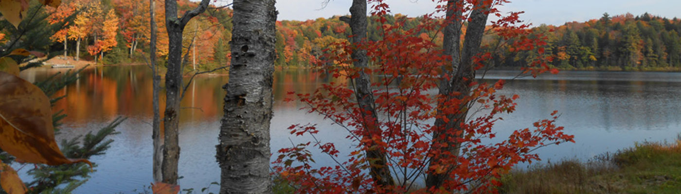 autumn in muskoka, north of bracebridge