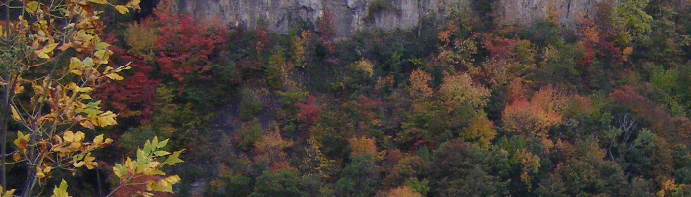 Niagara Gorge, Queenston Heights, autumn